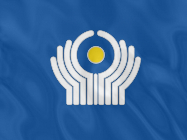 Экономический совет СНГ соберется в столице РФ 11 сентября
