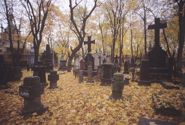 Первый проданный участок кладбищенской земли ушел с молотка за 452 тысячи рублей