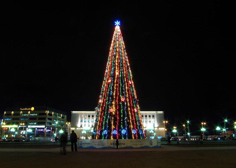 Москва увеличивает затраты на елки