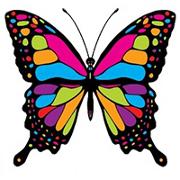 Компания Cyprus Butterfly рассказала о возможностях бизнес-иммиграции на Кипр