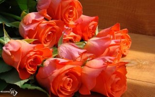 Где купить красивый букет цветов в Москве?