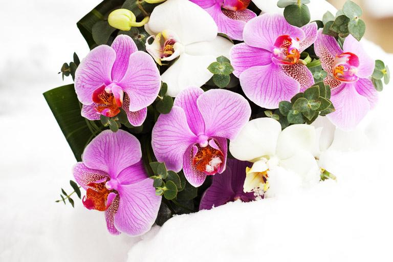 FlowWow: шикарные цветочные композиции от флористов со всей страны
