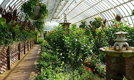 Умные теплицы: гарантия отличных урожаев