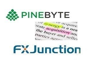 PineByte запущен новый веб-сайт для социальной торговли