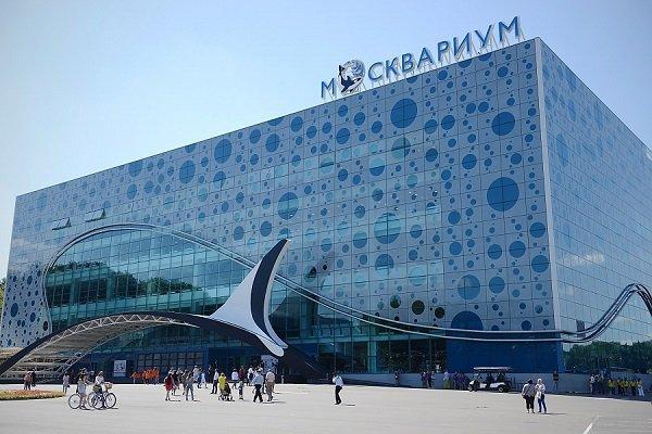 Миллиардер Аркадий Ротенберг является единоличным собственником крупнейшего вевропейских странах океанариума наВДНХ