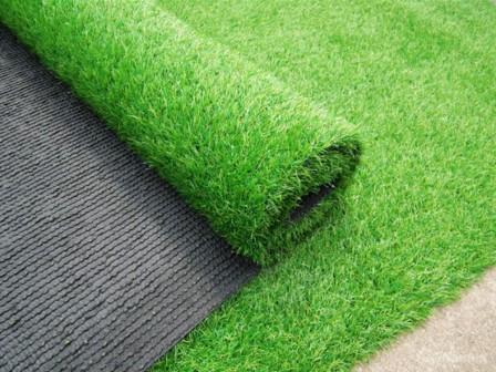Как правильно создать газон на дачном участке?