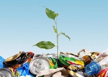 Утилизация отходов от компании
