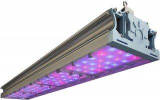 Советы по выбору светильников