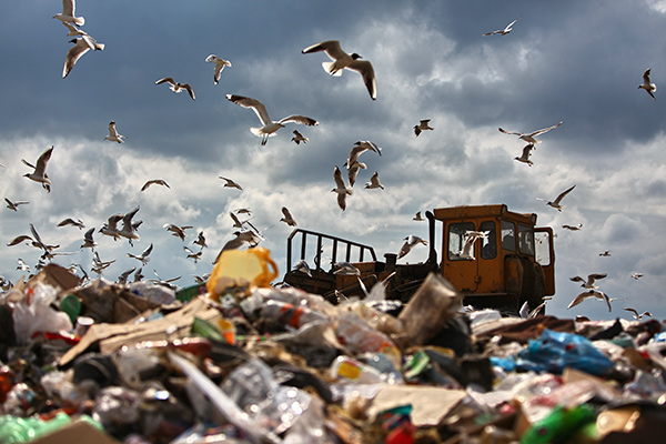 Основные мусорные полигоны Московской области
