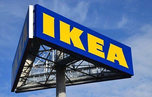 IKEA просит взыскать 80 млн рублей с компании Грудинина