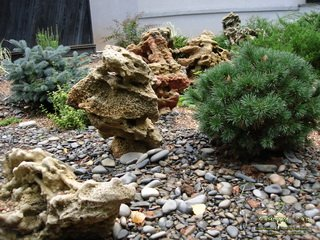 Умелый дизайн ландшафта от «Кантри сад»