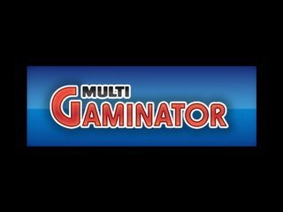 мульти гаминатор играть