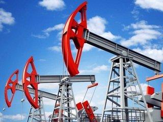 Как и где заказать контрольную работу по нефтегазовому делу?