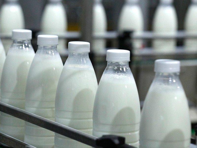 «Мираторг» осенью начнет экспансию на молочный рынок