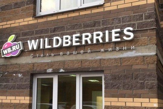 Wildberries анонсировал запуск в Москве бесплатной IT-школы