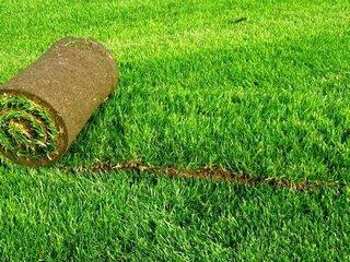 Особенности укладки рулонного газона и правила ухода