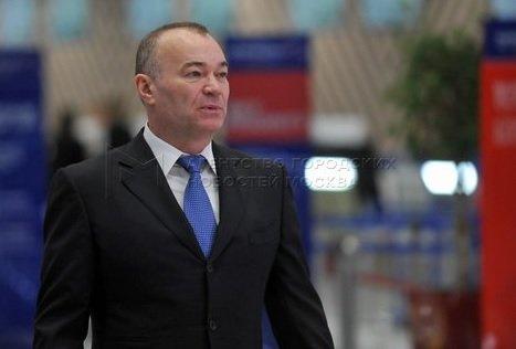 Совладелец Шереметьево отрекся от участия в проекте по строительству дворца в Геленджике