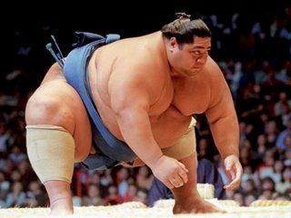 Анализ рисков при ставках на сумо
