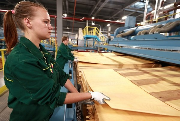 Собственник «Цветного» договорился об увеличении доли в капитале крупнейшего производителя древесины